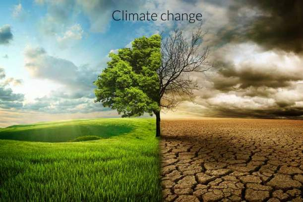 what-is-climate-change