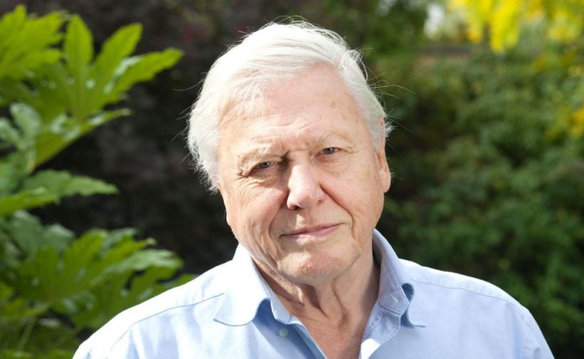 sirdavidattenborough
